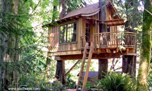 cabaña-de-madera-casa-del-arbol